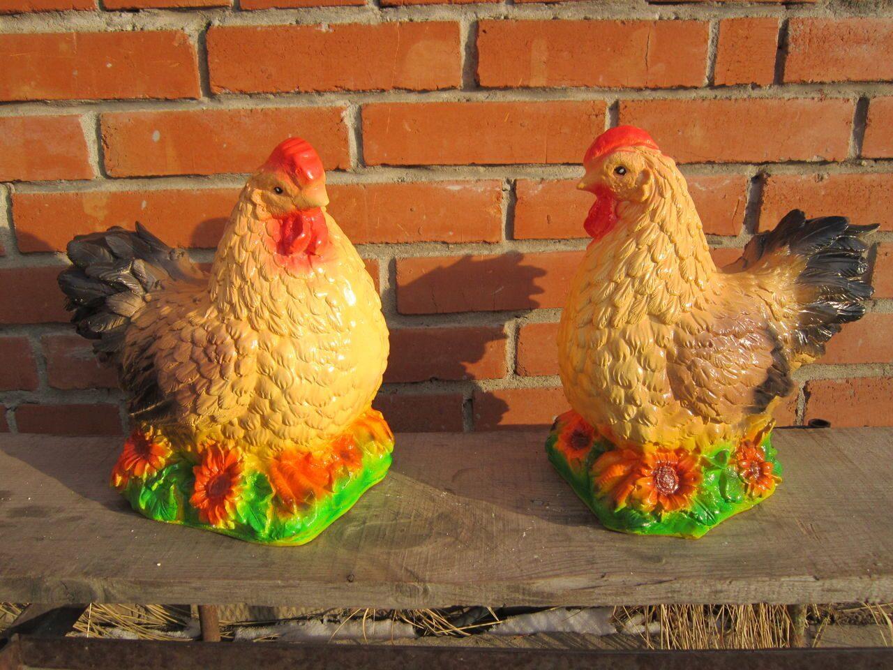 Отказали ноги у курицы, что с ней такое? Крупнейший 72